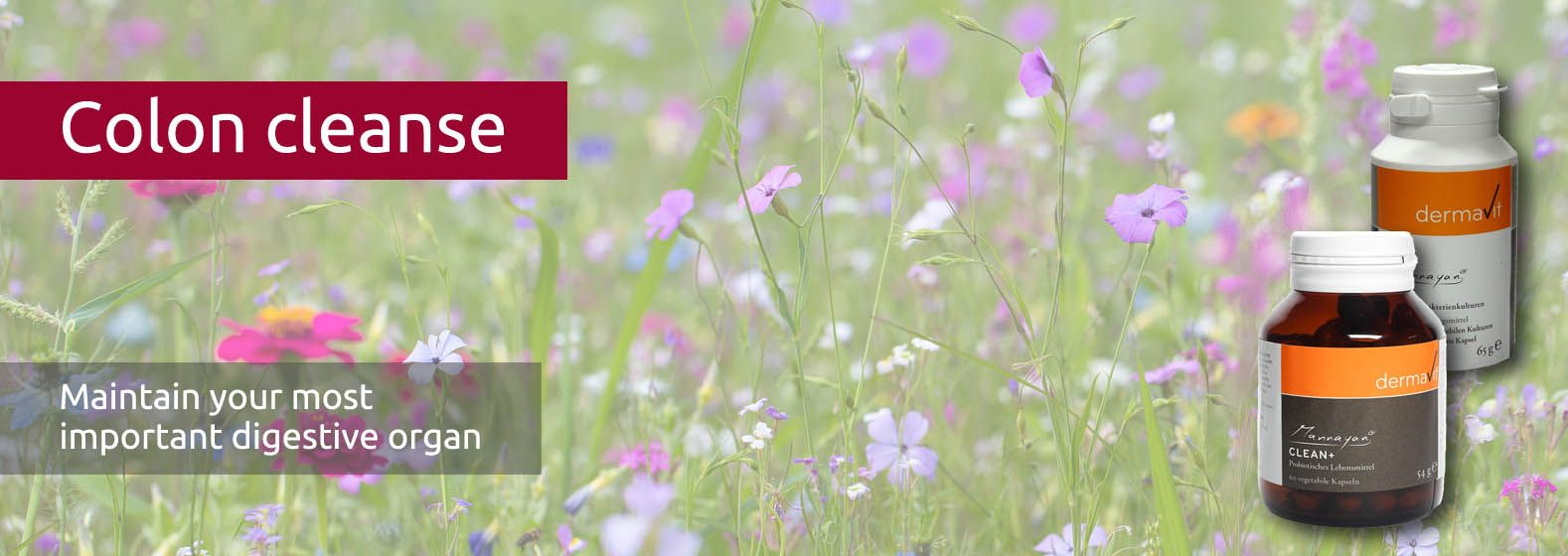 The natural flower meadow is as dense and varied as a healthy intestine flora.