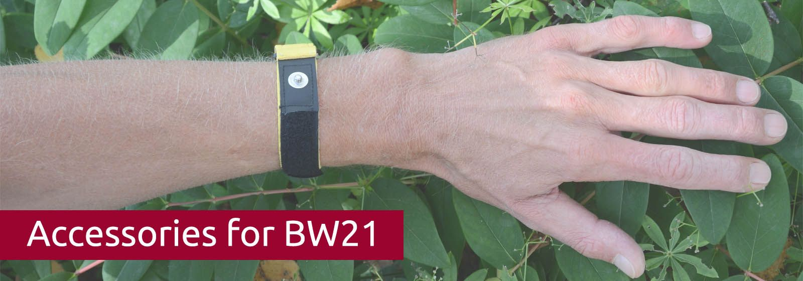 Accessories For Bw21 Parasite Zapper Alternative Medicine