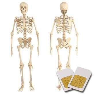 Chipcard BONE JOINTS for Zapper Biowave according to Hulda Clark